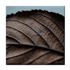 Leaf Veins Nerves Macro Closeup Tile Coasters by Amaryn4rt