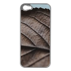 Leaf Veins Nerves Macro Closeup Apple Iphone 5 Case (silver) by Amaryn4rt