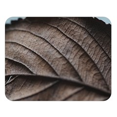 Leaf Veins Nerves Macro Closeup Double Sided Flano Blanket (large)  by Amaryn4rt