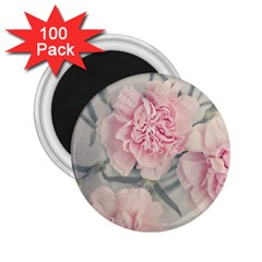Cloves Flowers Pink Carnation Pink 2 25  Magnets (100 Pack)  by Amaryn4rt