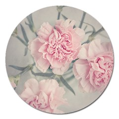 Cloves Flowers Pink Carnation Pink Magnet 5  (round) by Amaryn4rt