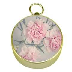 Cloves Flowers Pink Carnation Pink Gold Compasses by Amaryn4rt
