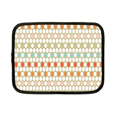 Lab Pattern Hexagon Multicolor Netbook Case (small)