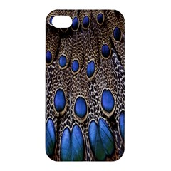 Feathers Peacock Light Apple Iphone 4/4s Premium Hardshell Case