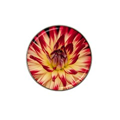 Bloom Blossom Close Up Flora Hat Clip Ball Marker