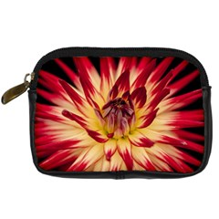 Bloom Blossom Close Up Flora Digital Camera Cases