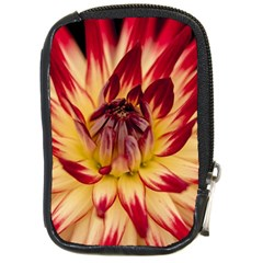 Bloom Blossom Close Up Flora Compact Camera Cases by Amaryn4rt