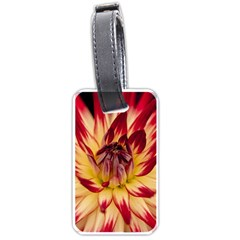 Bloom Blossom Close Up Flora Luggage Tags (one Side)  by Amaryn4rt