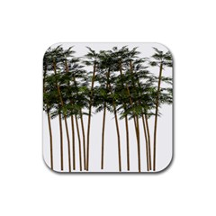 Bamboo Plant Wellness Digital Art Rubber Square Coaster (4 Pack)  by Amaryn4rt