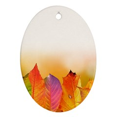 Autumn Leaves Colorful Fall Foliage Oval Ornament (two Sides) by Amaryn4rt