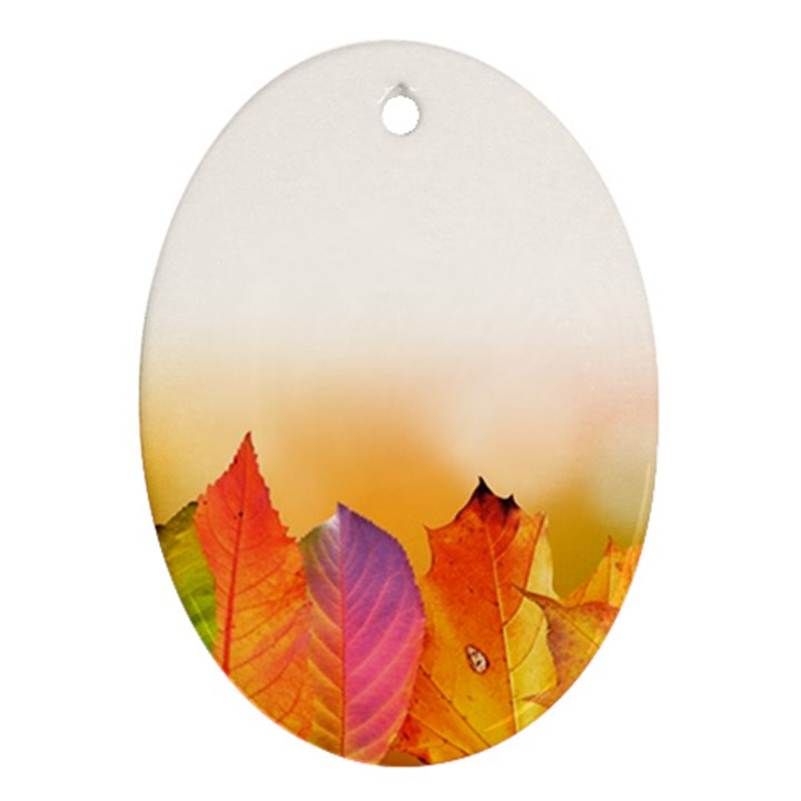 Autumn Leaves Colorful Fall Foliage Oval Ornament (Two Sides)