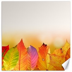 Autumn Leaves Colorful Fall Foliage Canvas 16  X 16   by Amaryn4rt