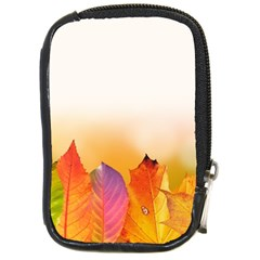 Autumn Leaves Colorful Fall Foliage Compact Camera Cases