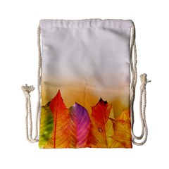 Autumn Leaves Colorful Fall Foliage Drawstring Bag (small) by Amaryn4rt