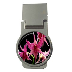 Orchid Flower Branch Pink Exotic Black Money Clips (round)  by Jojostore