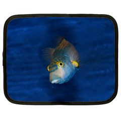 Fish Blue Animal Water Nature Netbook Case (xl)  by Amaryn4rt