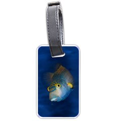 Fish Blue Animal Water Nature Luggage Tags (one Side)  by Amaryn4rt
