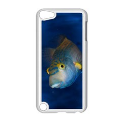 Fish Blue Animal Water Nature Apple Ipod Touch 5 Case (white) by Amaryn4rt