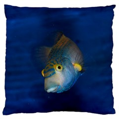 Fish Blue Animal Water Nature Large Flano Cushion Case (one Side)