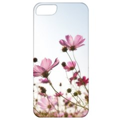 Flowers Plants Korea Nature Apple Iphone 5 Classic Hardshell Case by Amaryn4rt