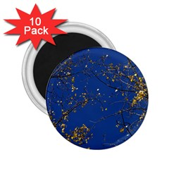 Poplar Foliage Yellow Sky Blue 2 25  Magnets (10 Pack)