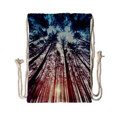 Lovely Up View Forest  Drawstring Bag (small) by Brittlevirginclothing