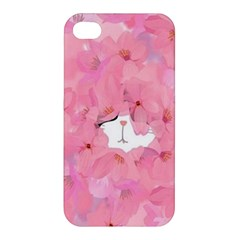 Cute Hiding Kitty Apple Iphone 4/4s Premium Hardshell Case by Brittlevirginclothing