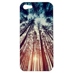 Up View Forest Apple Iphone 5 Hardshell Case by Brittlevirginclothing