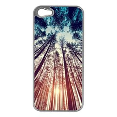 Up View Forest Apple Iphone 5 Case (silver)