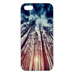 Up View Forest Iphone 5s/ Se Premium Hardshell Case by Brittlevirginclothing