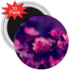 Blurry Flowers 3  Magnets (10 Pack)  by Brittlevirginclothing
