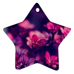 Blurry Flowers Star Ornament (two Sides) by Brittlevirginclothing