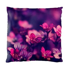 Blurry Flowers Standard Cushion Case (one Side) by Brittlevirginclothing