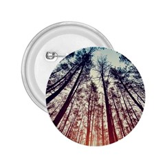 Up View Forest 2 25  Buttons by Brittlevirginclothing