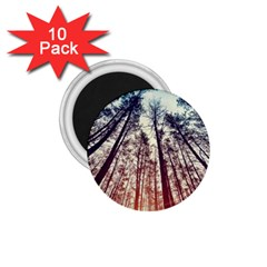 Up View Forest 1 75  Magnets (10 Pack)  by Brittlevirginclothing