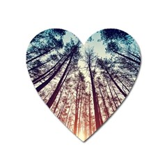 Up View Forest Heart Magnet by Brittlevirginclothing