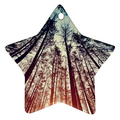 Up View Forest Star Ornament (two Sides) by Brittlevirginclothing