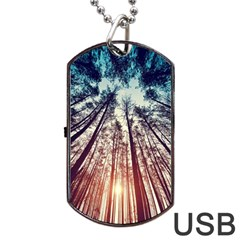 Up View Forest Dog Tag Usb Flash (one Side) by Brittlevirginclothing