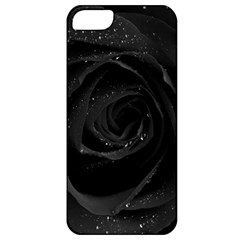 Black Rose Apple Iphone 5 Classic Hardshell Case by Brittlevirginclothing