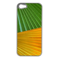 Pattern Colorful Palm Leaves Apple Iphone 5 Case (silver)