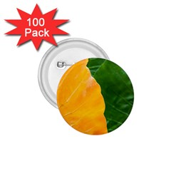 Wet Yellow And Green Leaves Abstract Pattern 1 75  Buttons (100 Pack)  by Amaryn4rt