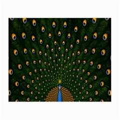 Peacock Feathers Green Small Glasses Cloth (2 Side) by AnjaniArt