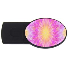 Round Bright Pink Flower Floral Usb Flash Drive Oval (4 Gb) by AnjaniArt