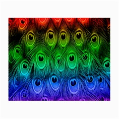 Peacock Feathers Rainbow Small Glasses Cloth
