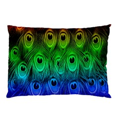 Peacock Feathers Rainbow Pillow Case