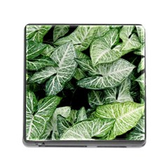 Green Leaves Nature Pattern Plant Memory Card Reader (square)