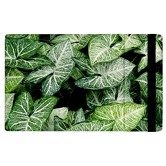 Green Leaves Nature Pattern Plant Apple Ipad 2 Flip Case by Amaryn4rt