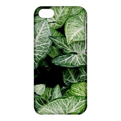 Green Leaves Nature Pattern Plant Apple Iphone 5c Hardshell Case by Amaryn4rt