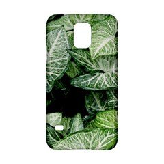 Green Leaves Nature Pattern Plant Samsung Galaxy S5 Hardshell Case  by Amaryn4rt