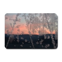 Hardest Frost Winter Cold Frozen Small Doormat  by Amaryn4rt
